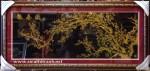 Tranh nhung đồng K017-Báo xuân đồ