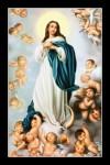 Mẹ cùng thiên thần -C61