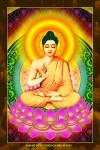 Phật Thích Ca 206 in dầu cao cấp