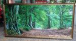 Tranh in mực dầu ép foam, rừng xanh -IN26