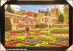 Vườn hoa tulip, tranh in dầu IN53